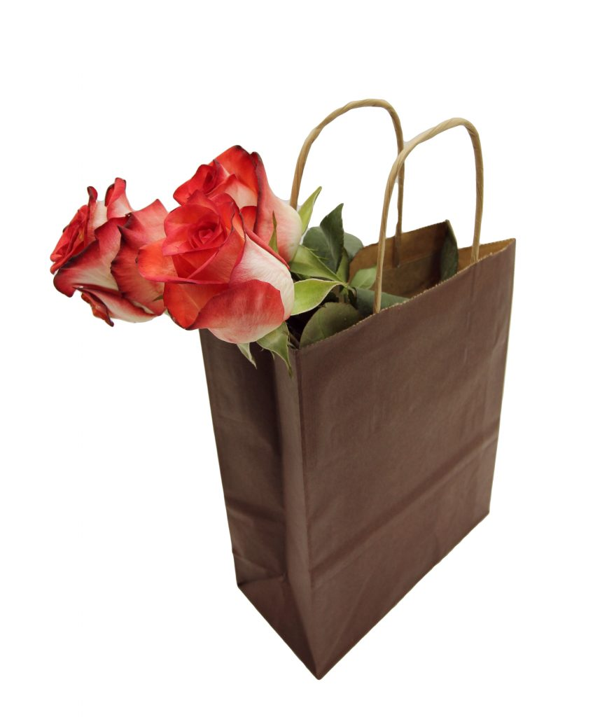nosilna vrečka iz papirja